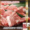 土佐和牛 炙り霜降りロース焼肉200g バーベキュー 高知県産和牛肉 霜降り BBQ【ラッキーシール対応】