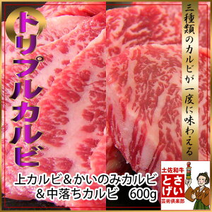 【ギフト対応】【SS】最高級A5カルビが3種類楽しめる土佐和牛トリプルカルビセット600g【バーベ...