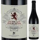 【6本〜送料無料】ユデアン ハイツ プティ ヴェルド 2014 ヘヴロン ハイツ ワイナリー 750ml [赤]Judean Heights Petit Verdot Hevron Heights Winery [自然派]