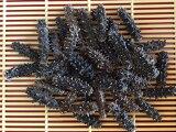 【北海道産】乾燥なまこ1KG入SSSサイズA級品【中華高級食材】