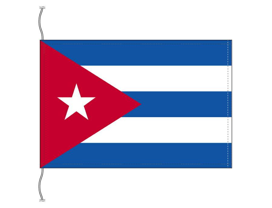 パーティーグッズ, 国旗  1624cm