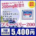 【北欧産ビルベリー】●ブルーベリー200&ルテイン、アスタキサンチン ビタミン3袋90粒540…