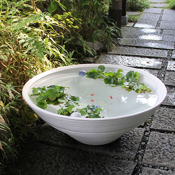 25号特大白水鉢信楽焼すいれん鉢![su-0136]