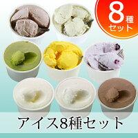 低糖質アイス詰め合わせ8種セット