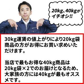 ■新米■29年産宮城県産つや姫20kg!玄米,5分,7分,精白米(精米時重量約1割減)【米】