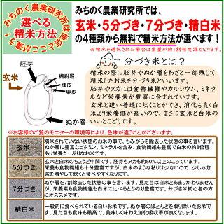 ■新米■29年産宮城県産ひとめぼれ20kg!玄米,5分,7分,精白米(精米時重量約1割減)【米】
