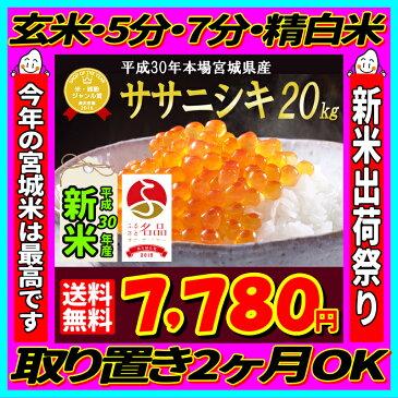 ■新米■30年産 宮城県産 ササニシキ 20kg 【米】 玄米,5分,7分,精白米(精米時重量約1割減)【dp】【2018ne】