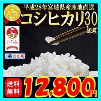 28年産 宮城県産 コシヒカリ 3...
