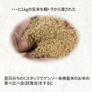 国産100%ブレンド米宮城ふるさと応援米10kg!複数原料米放射能検査済み【米】【dp】【HJ】