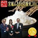 正真正銘の合鴨米 完全無農薬・アイガモ米 6kg (2kg×3)
