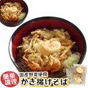 簡単調理 天然 海老 国産野菜 【かき揚