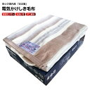【送料無料】電気毛布 掛敷毛布 電気掛け毛布 掛敷き かけし
