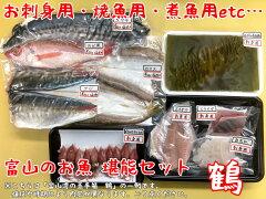 富山湾の玉手箱鶴