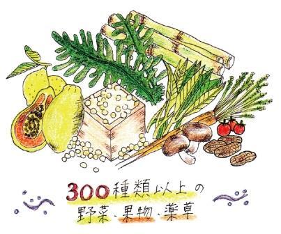 Ag・uA(アグア)酵素水500ml