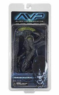 NECA 外星人系列 7 AVP 網格外星人 / 外星人