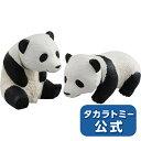 【1,000円OFFクーポン配布中!】アニアAS-23ジャイアントパンダ子どもタカラトミー