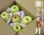 【訳あり】青森県産ぐんま名月【1.5kg(4〜5個入)】【青森県ぐんま名月りんごリンゴ贈答用お中元贈り物ギフトお歳暮】