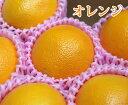 【送料無料】オーストラリア産 ネーブルオレンジ【8個】【 ネーブル オレンジ 柑橘 家庭用 贈り物 贈答 お祝い お返し ギフト プレゼント 父の日 母の日 】