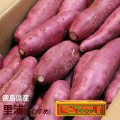【送料無料】徳島県産さつまいも里浦(里むすめ)【約5kg】【徳島県産家庭用贈り物贈答お祝いお返し芋いもイモ野菜お歳暮】