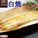 うなぎ白焼き 特大181-210g×2尾 約3.5人前 岩塩