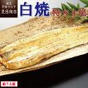 【新商品】うなぎ白焼き 特大181-210g×4尾 約7人前