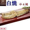 【新商品】うなぎ白焼き 中115-130g×4尾 約4人前
