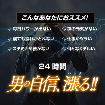 【公式】Zialis30mgジアリス男性用サプリメント20錠