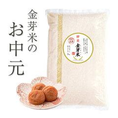 【米の精で育てたお米と梅干のセット】限定セット商品【お中元セット】酵素金芽米島根きぬむすめ2kg+南高梅梅干270g