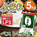 金芽米【無洗米】ベストセレクト5kg【28年産】【送料込】【とがずに炊ける】【LPS リポポリサッカライド 免疫力】きんめまい