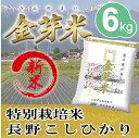 【新米】金芽米 特別栽培米6kg【2kg×3袋・送料込】【3...