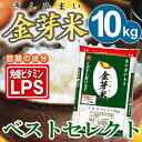 【新米】金芽米 ベストセレクト10kg【5kg×2袋・送料込...