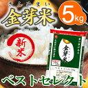 【29年産・新米】金芽米 ベストセレクト5kg【送料込】※無洗米・LPS(リポポリサッカライド)が豊富で免疫力アップ(きんめまい・お米)