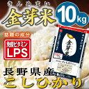 金芽米 長野こしひかり10kg【5kg×2袋・送料込】【29...