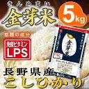 金芽米 長野こしひかり 5kg【送料込】【29年産】※無洗米...