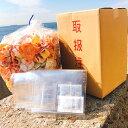 えびせんべい 送料無料 北海道・沖縄は送料追加 メガ盛り えびせん おせんべい せんべい 訳あり...