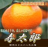 【送料無料】【楽ギフ_のし】寿太郎 5kg