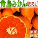 【御家庭用】青島みかん 5キロ【送料無料】【訳あり】05P05Nov16