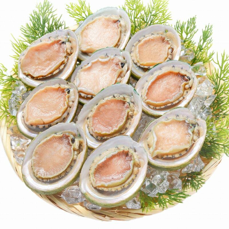 貝類, アワビ  L 3kg 36 112