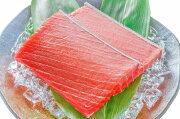 【送料無料】本マグロ本まぐろ中トロ200g正規品とろける美味いしさで人気ダントツ1番は、やっぱり中トロ!【本鮪鮪まぐろマグロクロマグロ刺身寿司海鮮丼冷凍レシピギフト】【楽ギフ_のし】