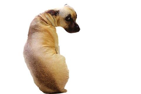 3Dプリント アニマル 動物 リアル犬抱き枕 腰枕 携帯枕 ワンコぬいぐるみ オフィス用 90cm