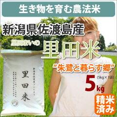 新潟県佐渡島産コシヒカリ「里田米」生産者「里田まい」