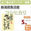新潟県魚沼産「コシヒカリ こしひかり」5kg【がんばろう!日本】【楽ギフ_のし】【新生活】