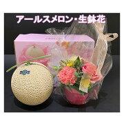 母の日セットアールスメロン・生鉢花