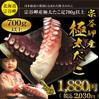 北海道最北宗谷岬産極太の刺身用たこ足1本700g以上