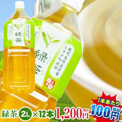 トライアル緑茶2L×12本【ケース販売】お茶|ペットボトル