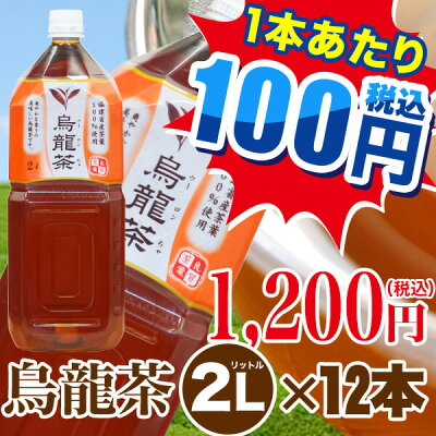 トライアル烏龍茶2L×12本【ケース販売】お茶|ペットボトル|ウーロン茶