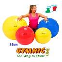 【送料無料◆ダブルアクションポンプをプレゼント】ギムニクボール55 (レッド)直径5……