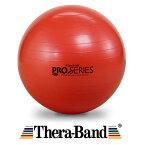 【今ならダブルアクションポンプをプレゼント】セラバンドSDSエクササイズボール(レッド)直径55cm 適用身長150〜165cm