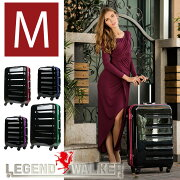 スーツケース キャリー キャリーバッグ フレーム キャスター