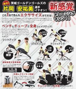 【アルインコ】マルチコンパクトジムEXG042☆トレーニングマシン☆